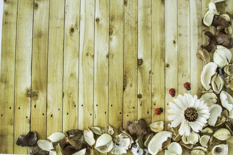 Abstrakt begrepp torkad blommaram på tappningträbakgrund royaltyfri fotografi