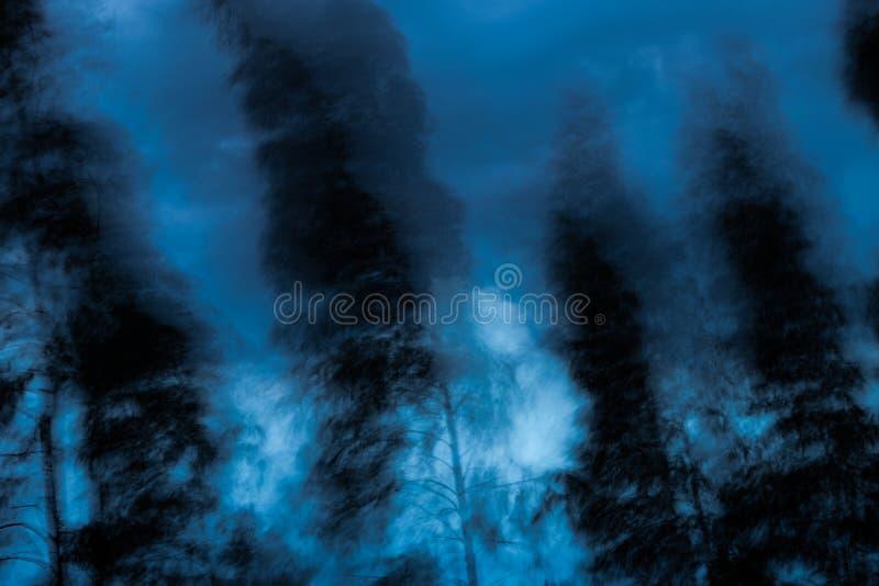 Abstrakt begrepp Vinden blåser träden arkivbild