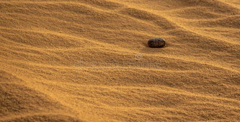 Abstrakt bild av en rund sten i sandöknen, som ska täckas snart av den blåsa sanden royaltyfri bild