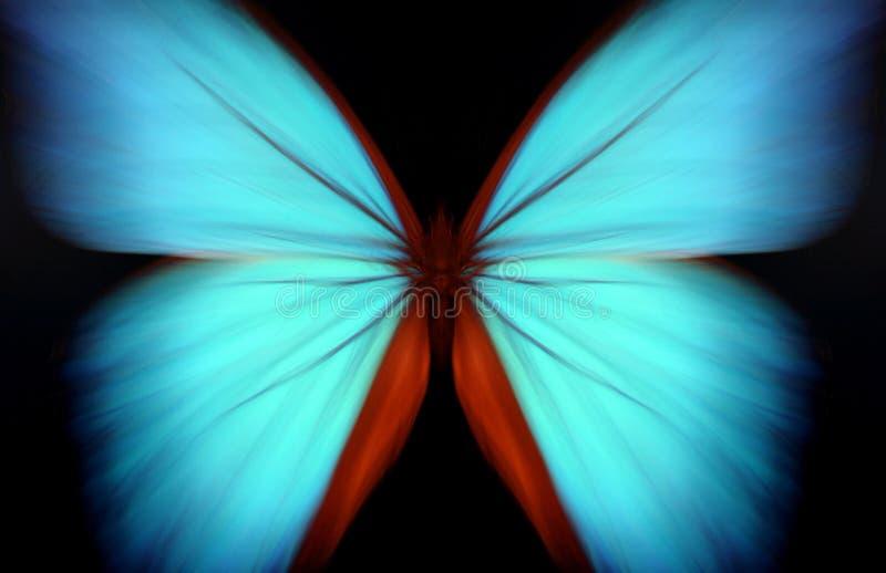 abstrakt blå morpho royaltyfria foton