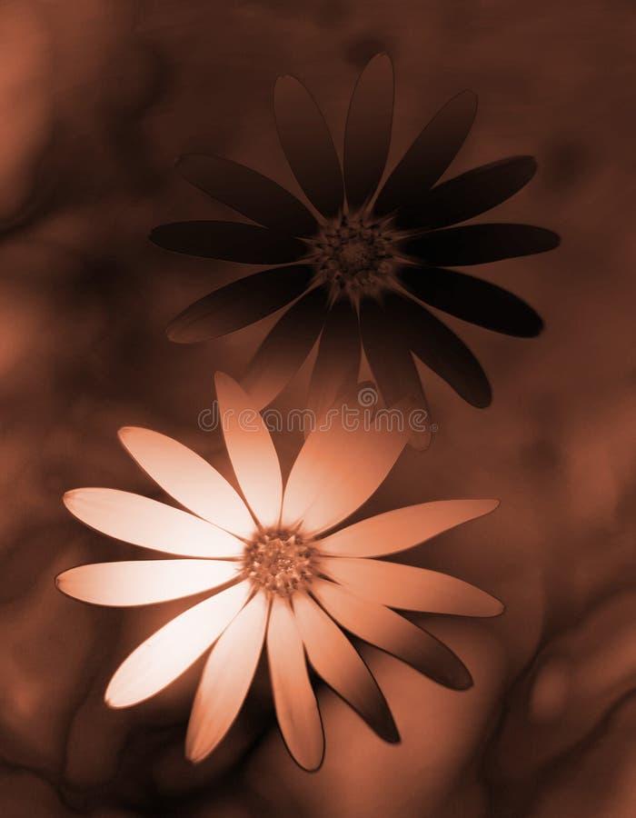 abstrakt blommor stock illustrationer