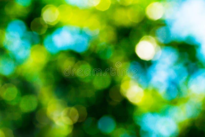Abstrakt bokehbakgrund för sommar i gröna gula och blåa färger Suddig bakgrund av gröna sidor på naturen royaltyfria foton