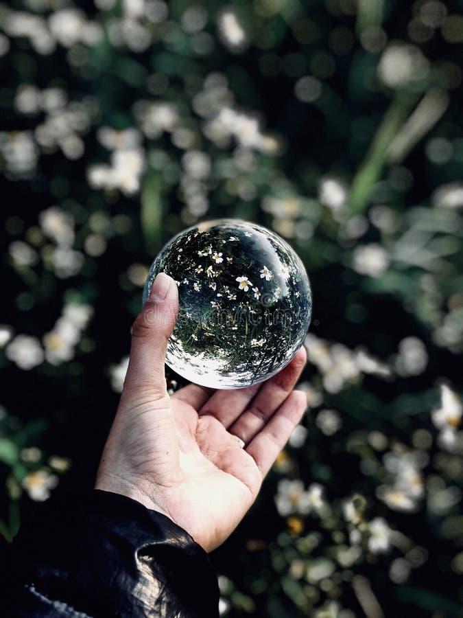 abstrakt bollexponeringsglas för bakgrund 3d royaltyfria bilder