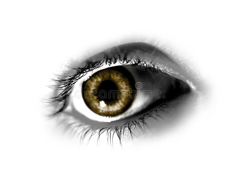 abstrakt brunt öga royaltyfri illustrationer
