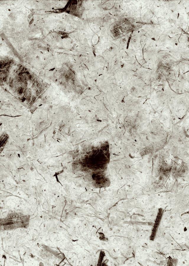 abstrakt deckle kantade den gråa naturliga paper texturwallpaperen arkivfoton