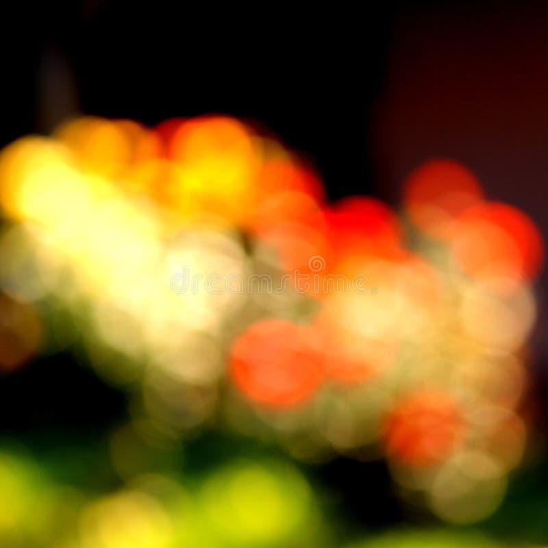 abstrakt färgrika blommor royaltyfria foton