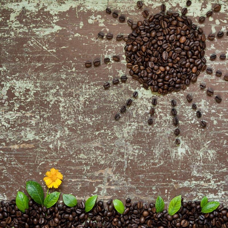 Abstrakt form för kaffebönor royaltyfria foton