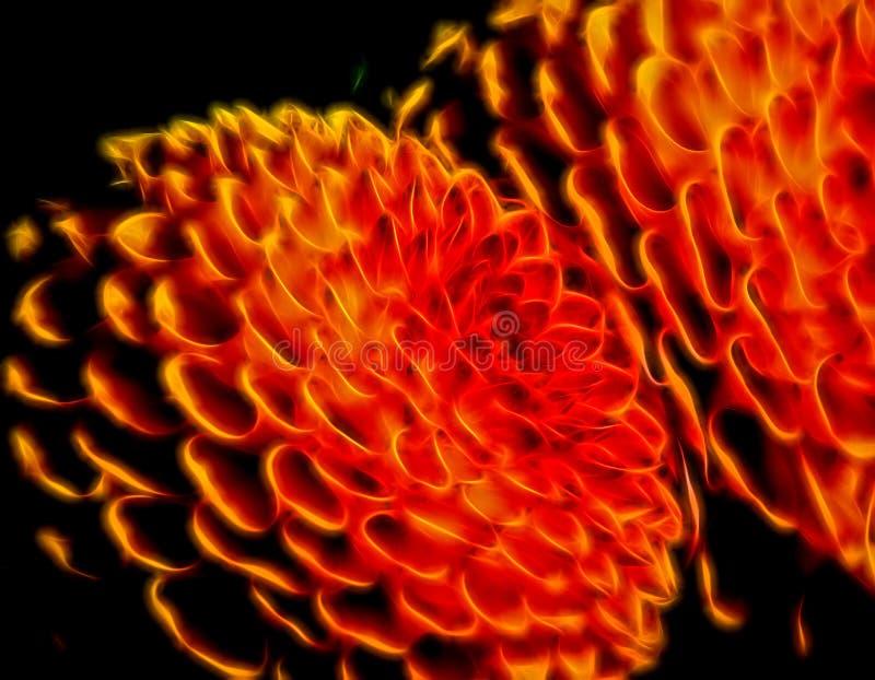 Abstrakt glödande föreslå för cirklar av blommor arkivbild