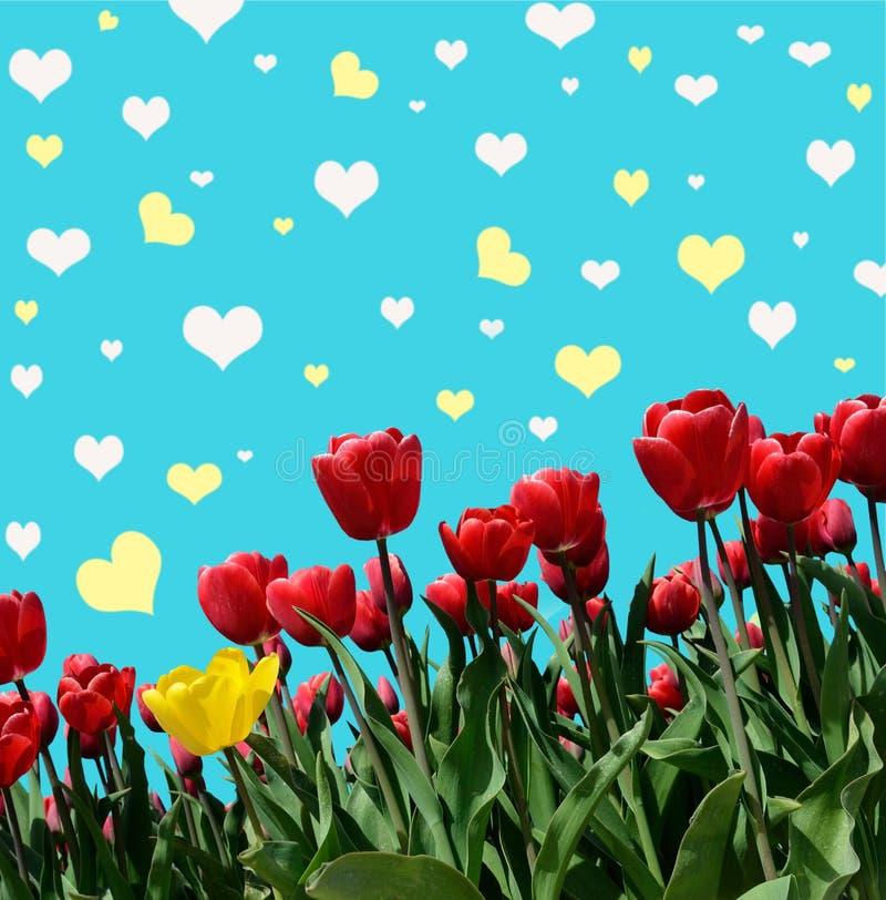 Abstrakt-Hintergrund mit Tulpen für den Gruß mit einem glücklichen Valent vektor abbildung