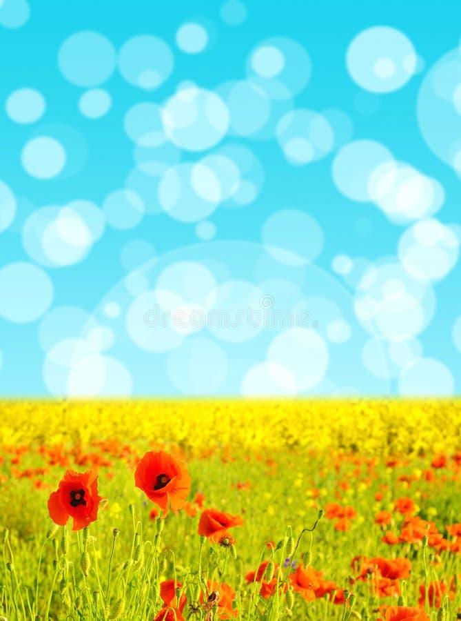 Abstrakt-Hintergrund mit Tulpen und Krokussen für den Gruß mit a stock abbildung