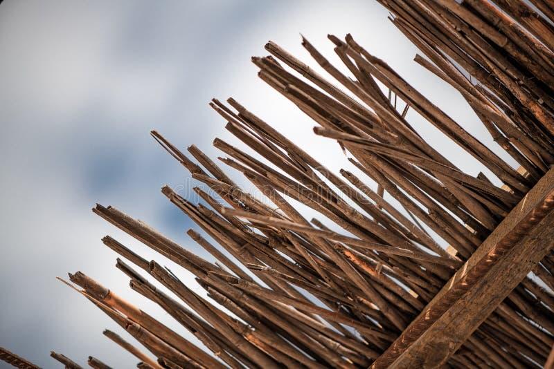 Abstrakt-Hintergrund von der trockenen Bambusniederlassungsbeschaffenheit lizenzfreies stockfoto