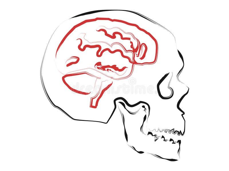 Abstrakt hjärna royaltyfri illustrationer