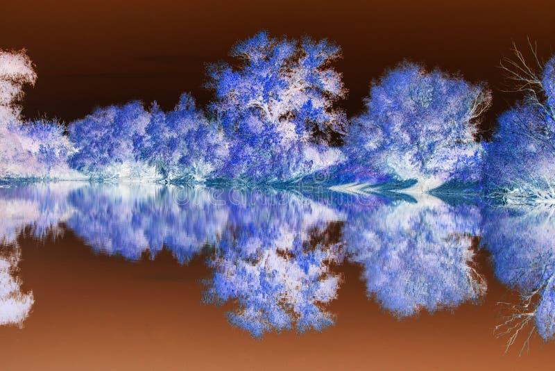 abstrakt liggande Världen i en annan färg Abstrakt konst i fotografi royaltyfri fotografi