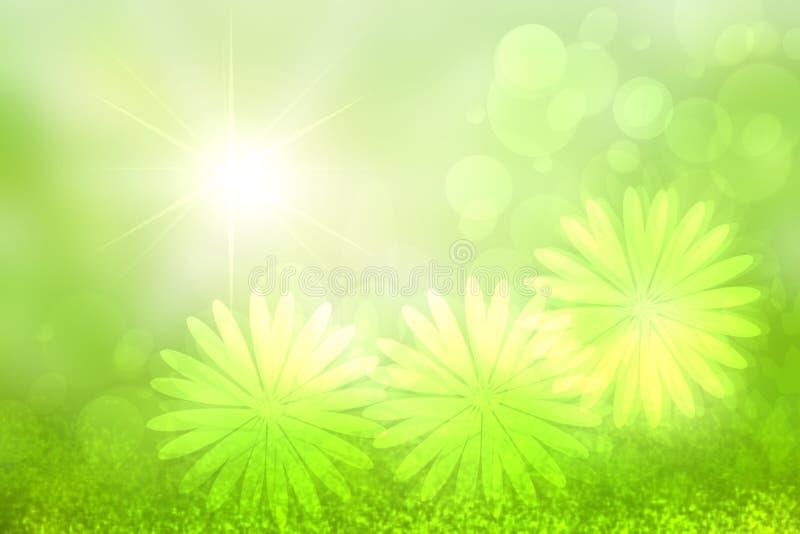 Abstrakt ljus vår- eller sommarlandskaptextur med naturliga gröna bokehljus och blommor och ljusa soliga strålar Vår eller royaltyfri illustrationer
