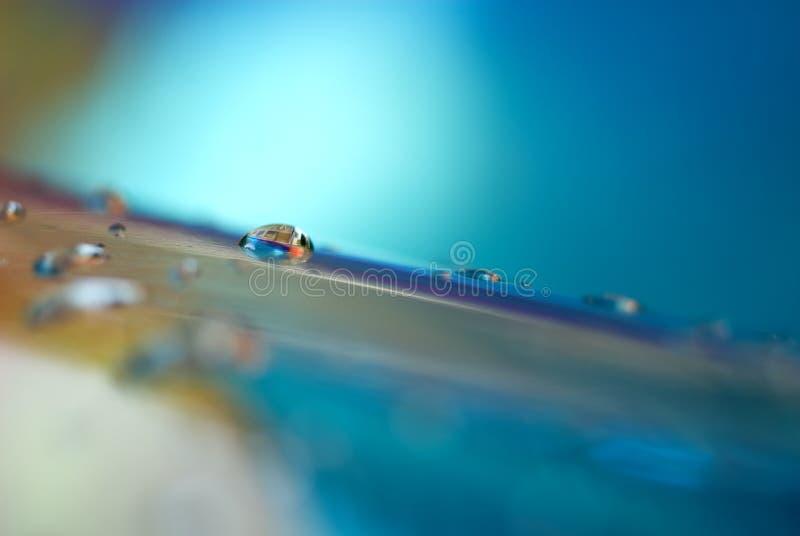 abstrakt makropölvatten arkivbilder