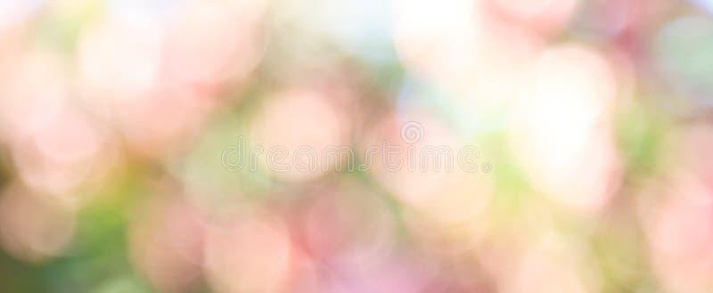 Abstrakt naturbokehbakgrund arkivbild