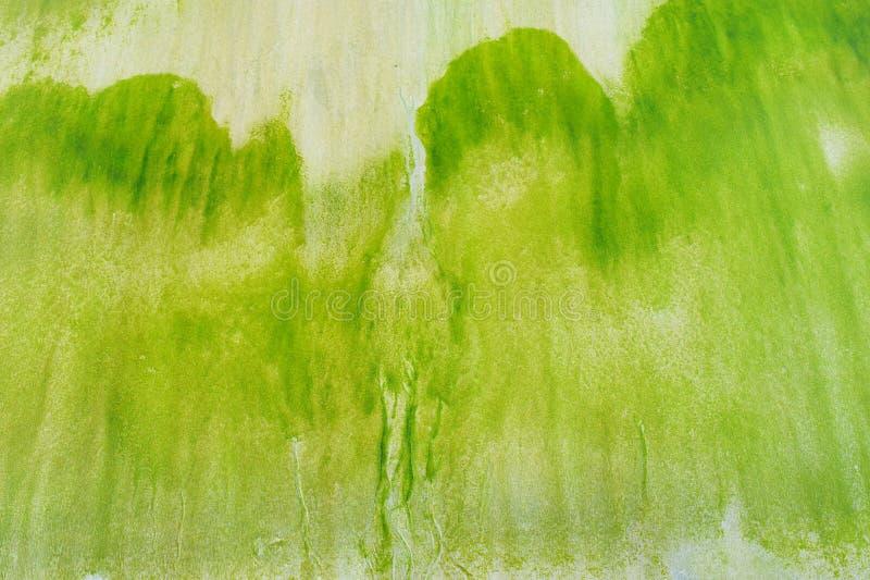 Abstrakt naturlig texturbakgrund - ojämn modell som skapas av gröna alger på Sandy Beach royaltyfri bild