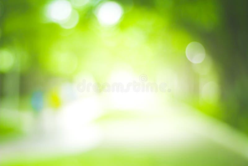 Abstrakt natury plamy zielony tło i światło słoneczne zdjęcie stock