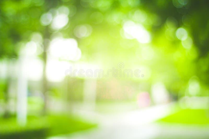 Abstrakt natury plamy zielony tło i światło słoneczne zdjęcie royalty free