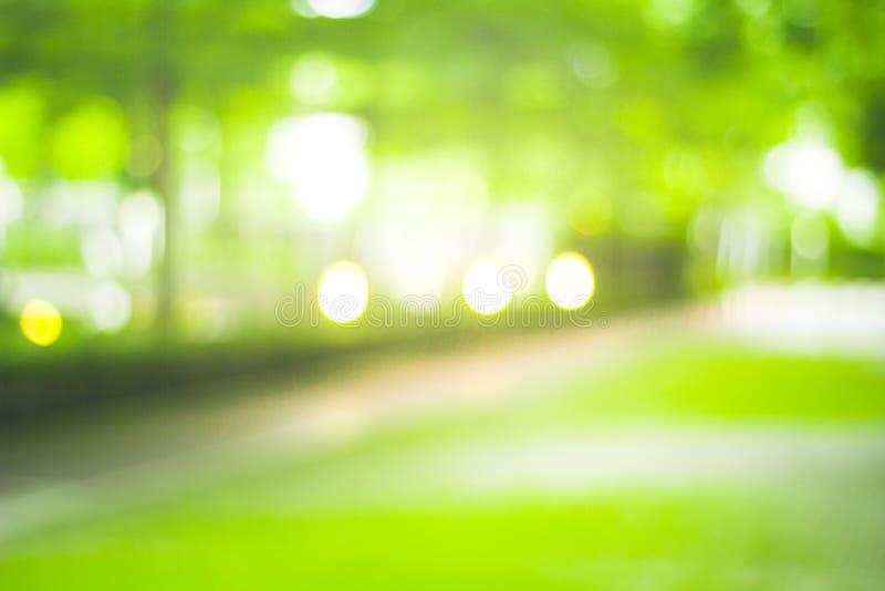 Abstrakt natury plamy zielony tło i światło słoneczne obrazy stock