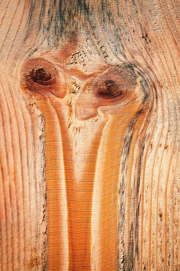abstrakt ono przygląda się na drewnianej desce fotografia royalty free