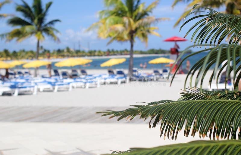 Abstrakt Plażowy i Tropikalny miejsce przeznaczenia obraz stock