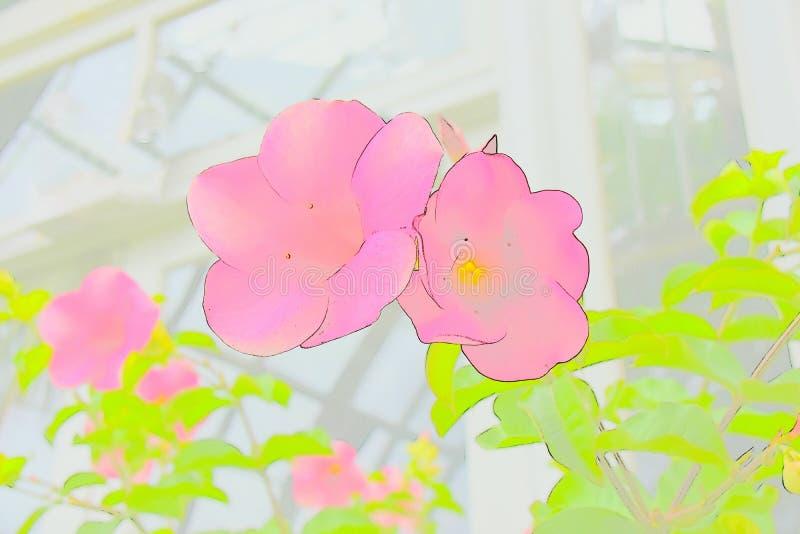 Abstrakt Różowa orchidea obraz stock