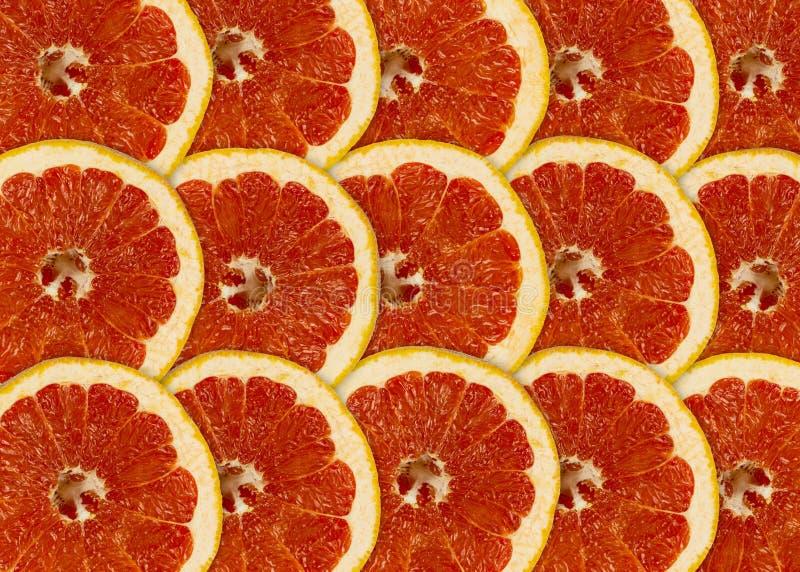Abstrakt röd bakgrund med citrus-frukt av grapefruktskivor arkivfoto