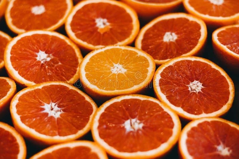 abstrakt red för fotografi för grapefrukten för frukt för bakgrundscitrusclosen skivar upp studion Närbild arkivbilder