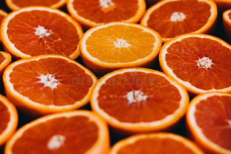 abstrakt red för fotografi för grapefrukten för frukt för bakgrundscitrusclosen skivar upp studion Närbild arkivbild