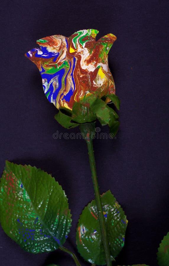 Abstrakt Rose royaltyfria foton