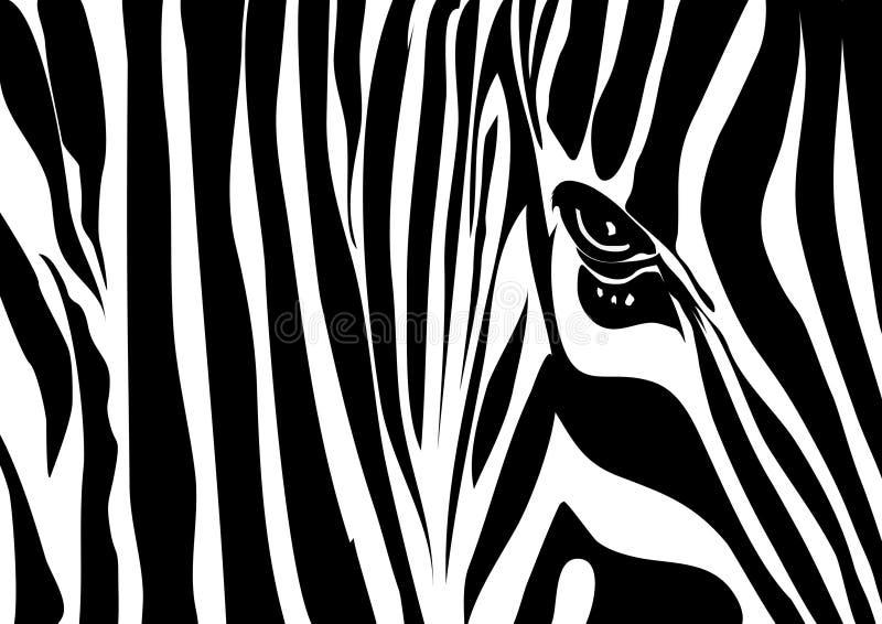 abstrakt sebra stock illustrationer