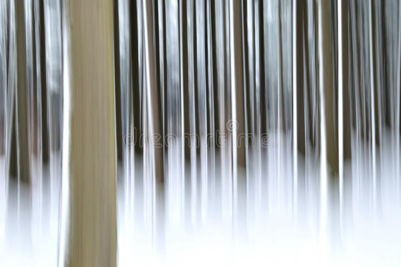 Abstrakt skog i vinter arkivfoto