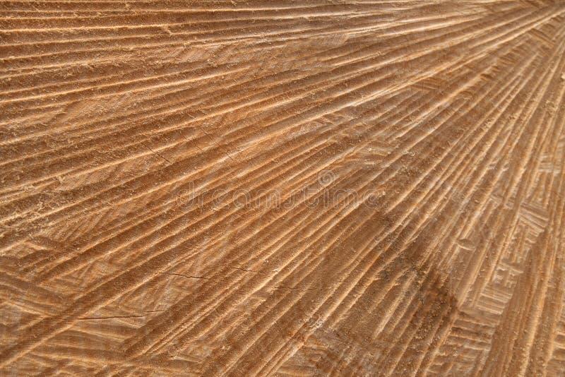 Abstrakt snittyta av en trädstam arkivbilder