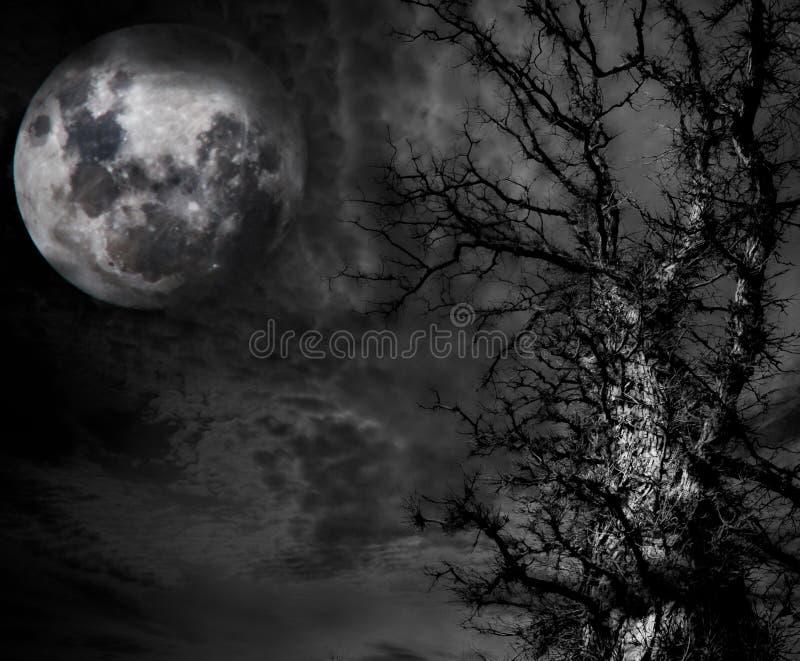 Abstrakt spöklikt träd och måne arkivbild