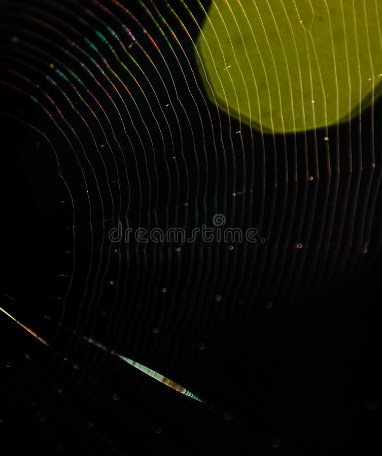 Abstrakt spindelreng?ringsduk med den ljusa signalljuset royaltyfria foton