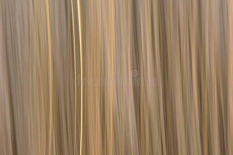 Abstrakt suddig vassbakgrund för rörelse fotografering för bildbyråer
