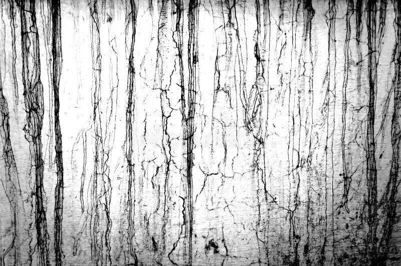 Abstrakt svartvit Grungetextur arkivbild