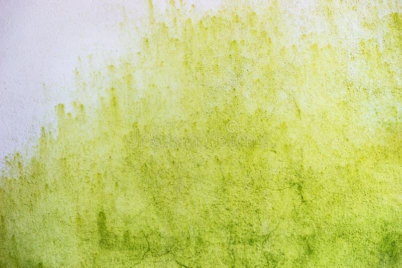 Download Abstrakt Vägg För Gräsplan- Och Vitbakgrundscement Arkivfoto - Bild av effekt, smutsigt: 78730250