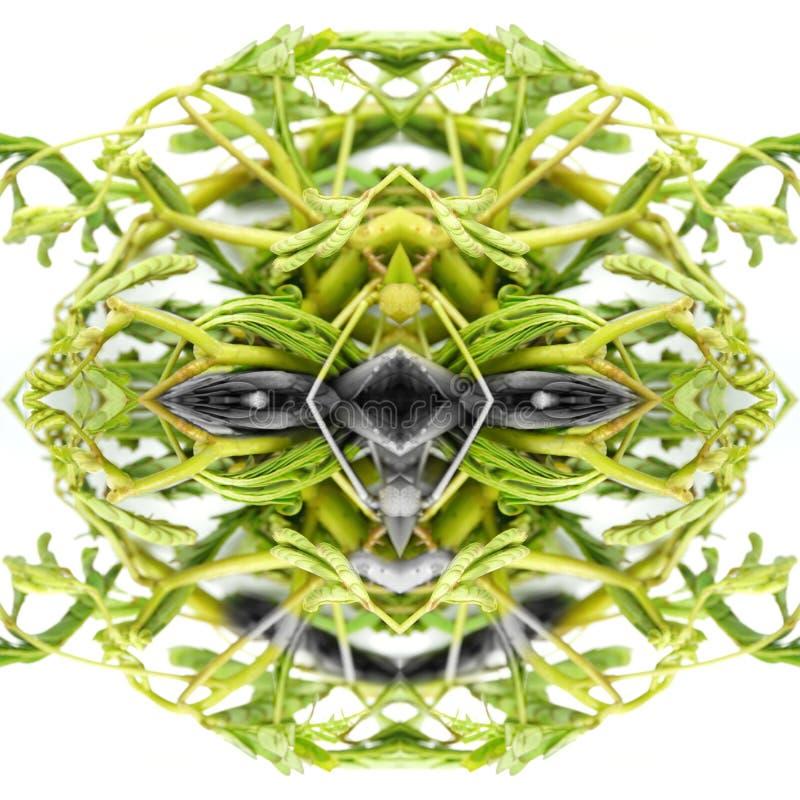Abstrakt vänlig gigantisk framsida av grön grönsaktextur Begrepp av den godhjärtade ondskan, jäkel, fredag 13th, allhelgonaafton arkivbilder