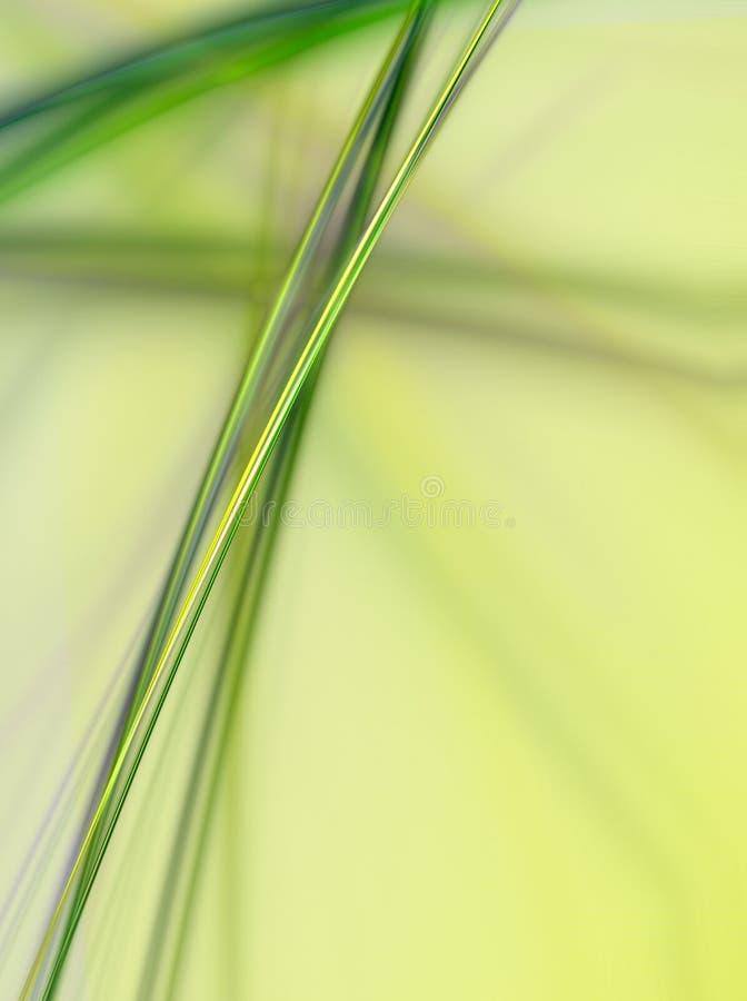 abstrakt växt stock illustrationer