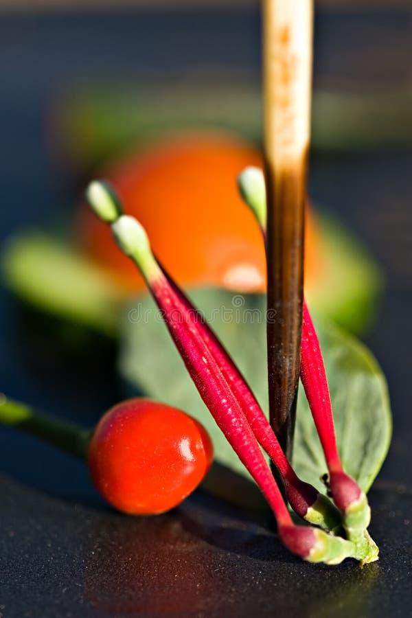 abstrakt veggies arkivfoto