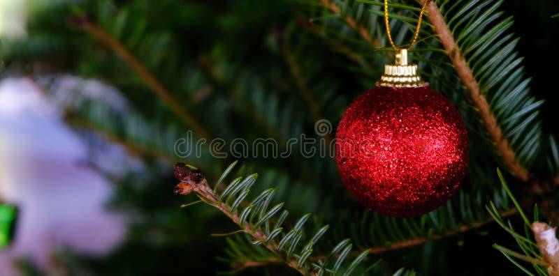 Abstrakt zamazujący choinki bokeh tło Nowego Roku Ce fotografia royalty free