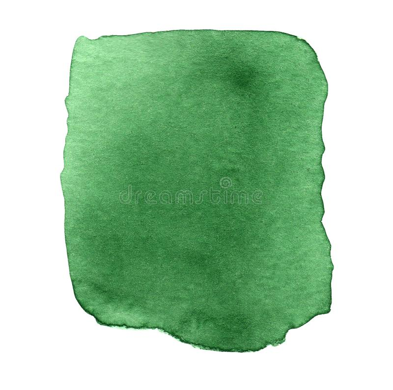 Abstrakt zielona akwarela na bia?ym tle r?ka patroszona ilustracja wektor