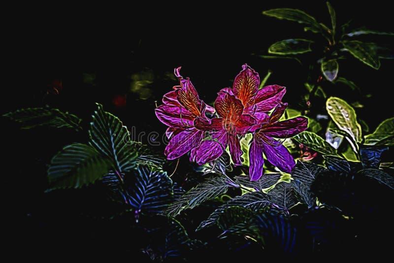Abstrakta blommor framme av svart bakgrund royaltyfria foton