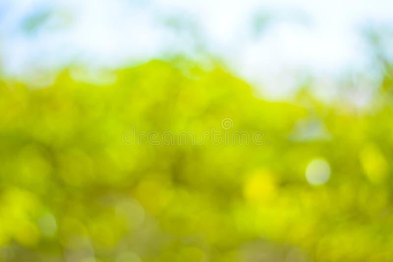 Download Abstrakta Bokeh Zielony Naturalny Tło Obraz Stock - Obraz złożonej z element, błyszczący: 53775883