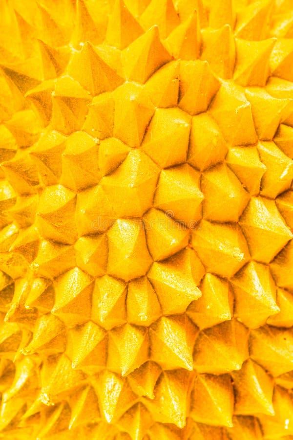 Abstrakta durianfrukttaggar arkivbild