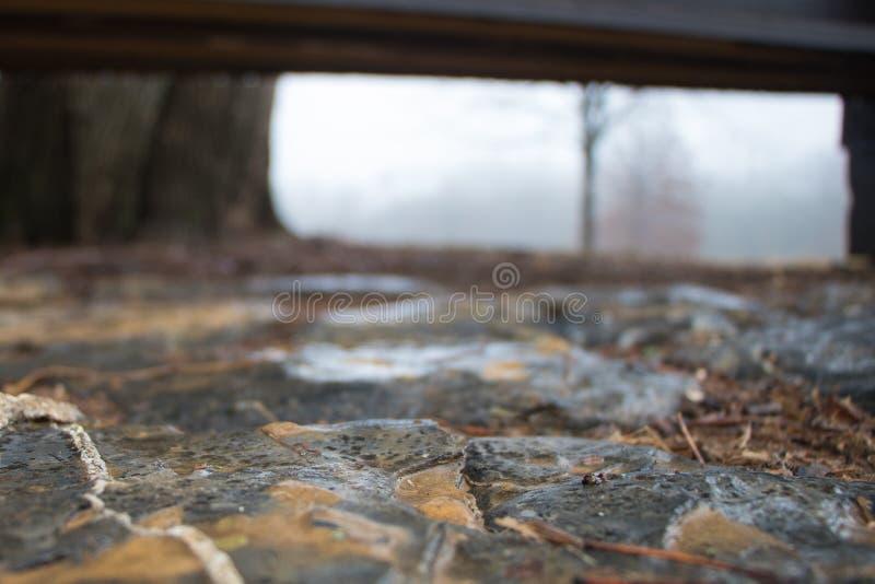 Abstrakta strzał mokrzy flizy pod parkową ławką zdjęcia stock