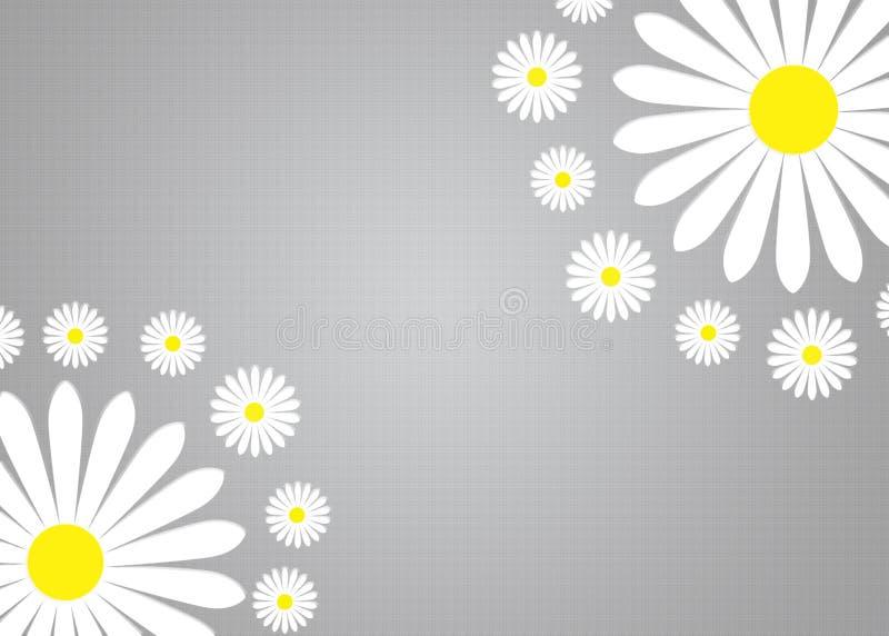 Abstrakta vita Daisy Flowers i Gradated och texturerade Grey Background fotografering för bildbyråer