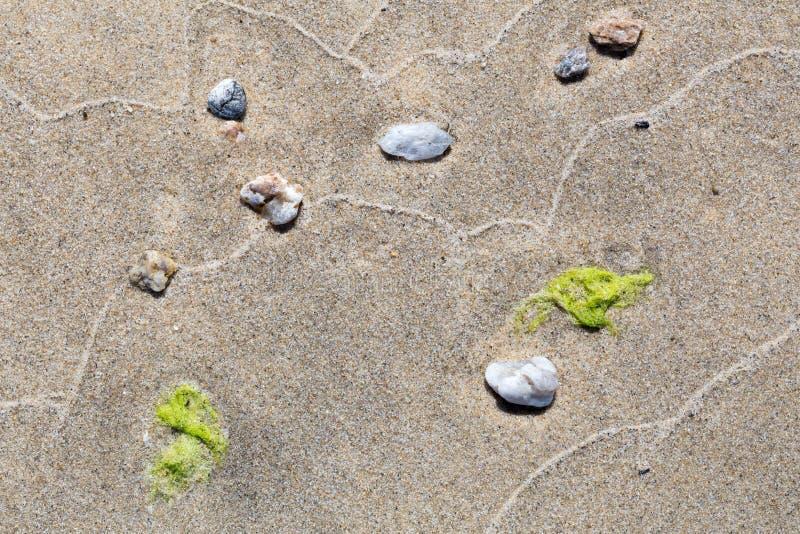 Abstrakta wzór fala na piaskowatej plaży zdjęcie stock